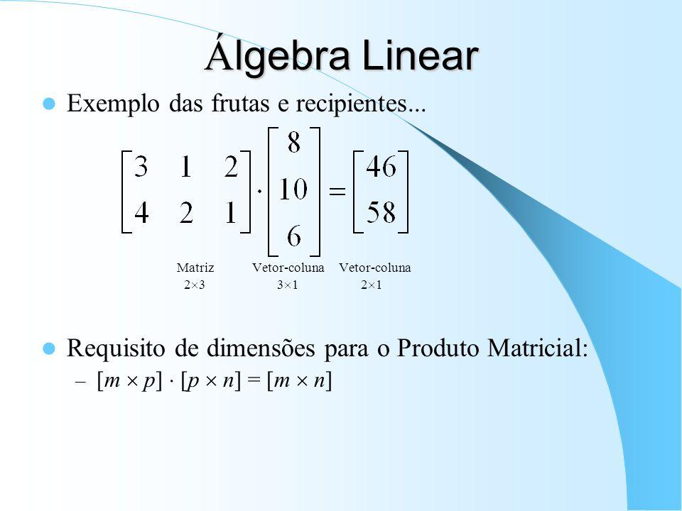 Álgebra Linear Exemplo das frutas e recipientes...