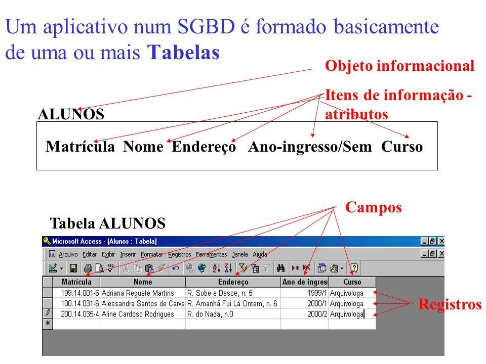 Um aplicativo num SGBD é formado basicamente de uma ou mais Tabelas