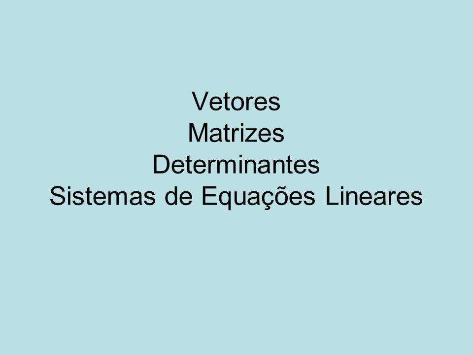 Vetores Matrizes Determinantes Sistemas de Equações Lineares