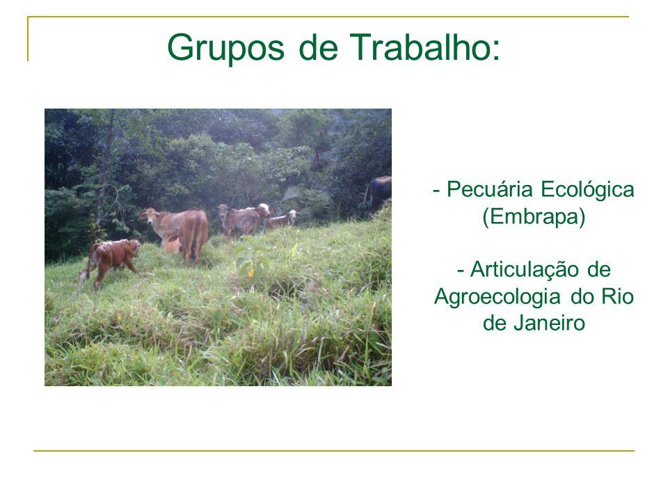 Grupos de Trabalho: Pecuária Ecológica (Embrapa) - Articulação de Agroecologia do Rio de Janeiro