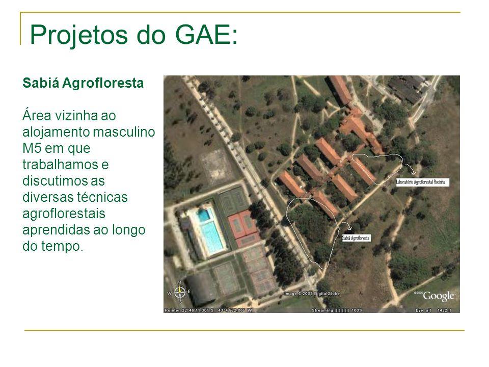 Projetos do GAE: Sabiá Agrofloresta