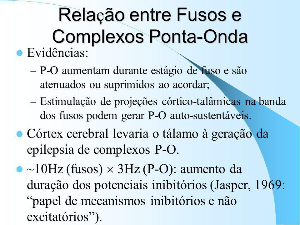 Relação entre Fusos e Complexos Ponta-Onda