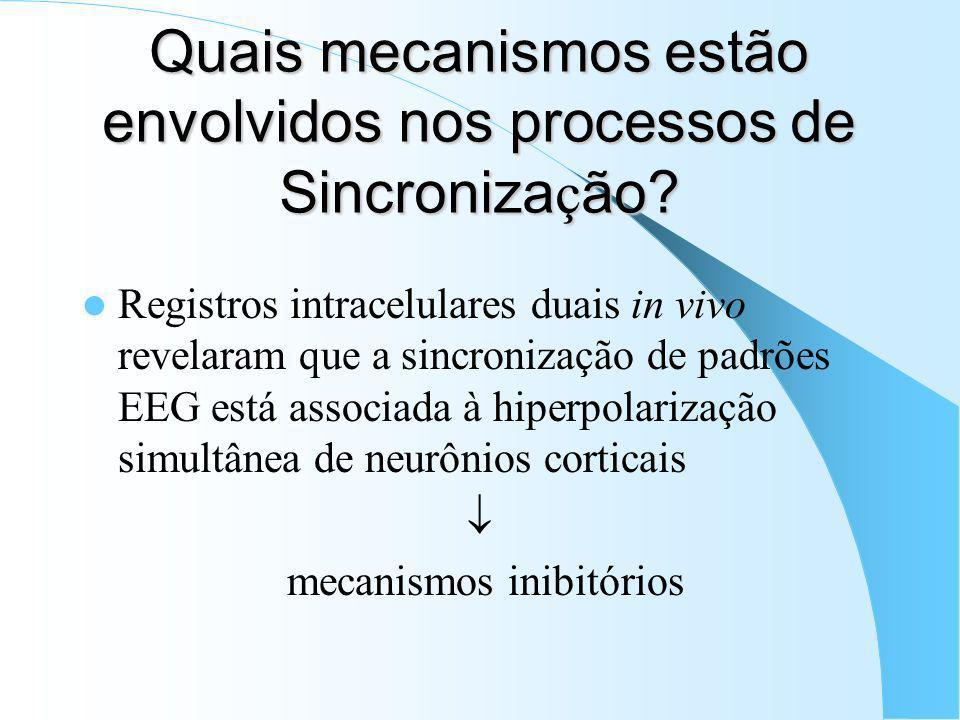 Quais mecanismos estão envolvidos nos processos de Sincronização