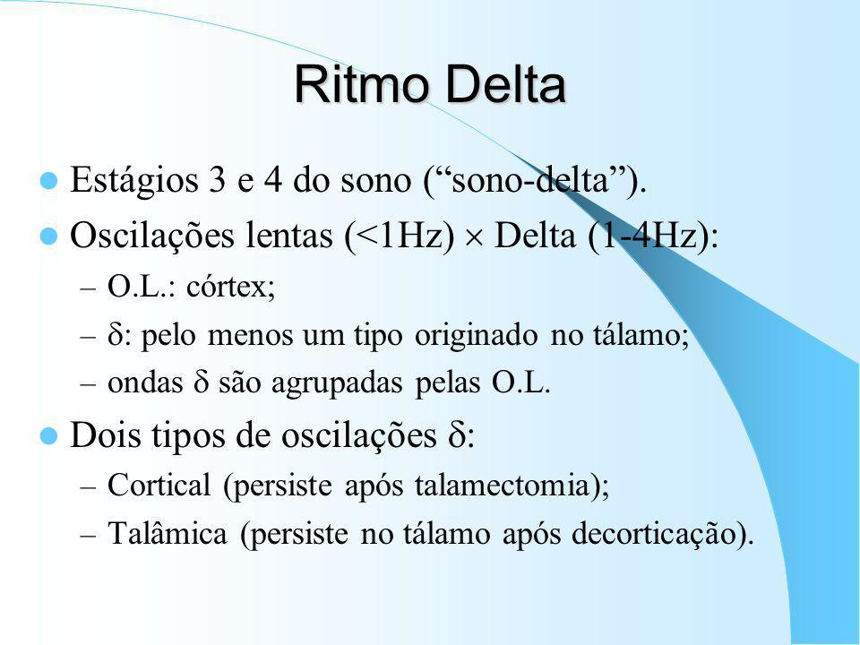 Ritmo Delta Estágios 3 e 4 do sono ( sono-delta ).