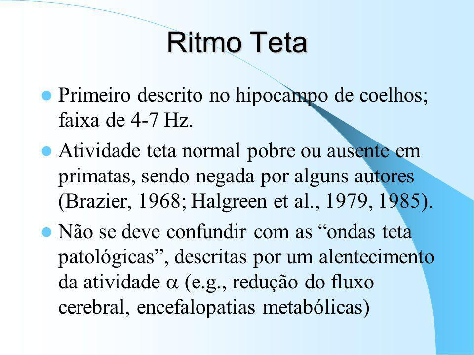 Ritmo Teta Primeiro descrito no hipocampo de coelhos; faixa de 4-7 Hz.