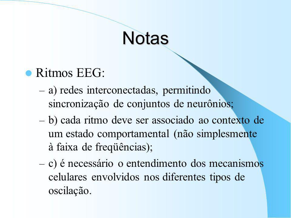 Notas Ritmos EEG: a) redes interconectadas, permitindo sincronização de conjuntos de neurônios;