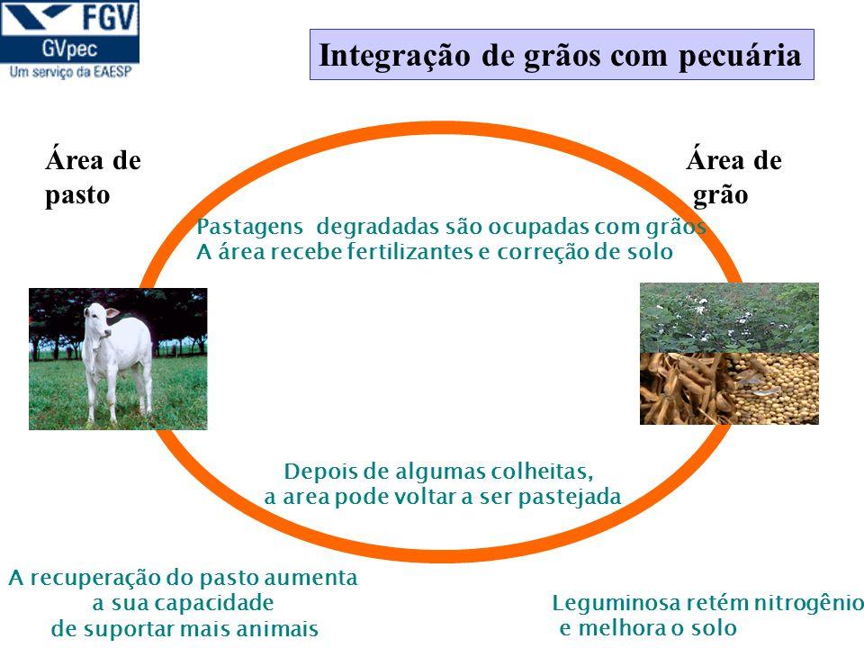 Integração de grãos com pecuária