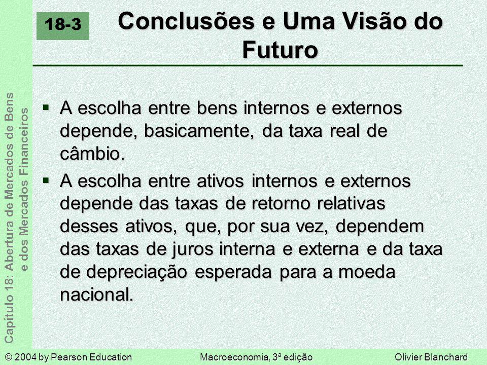 Conclusões e Uma Visão do Futuro
