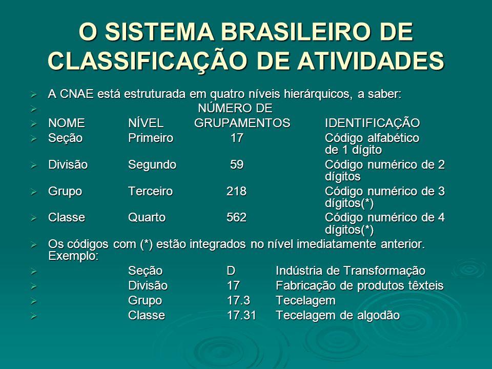 O SISTEMA BRASILEIRO DE CLASSIFICAÇÃO DE ATIVIDADES