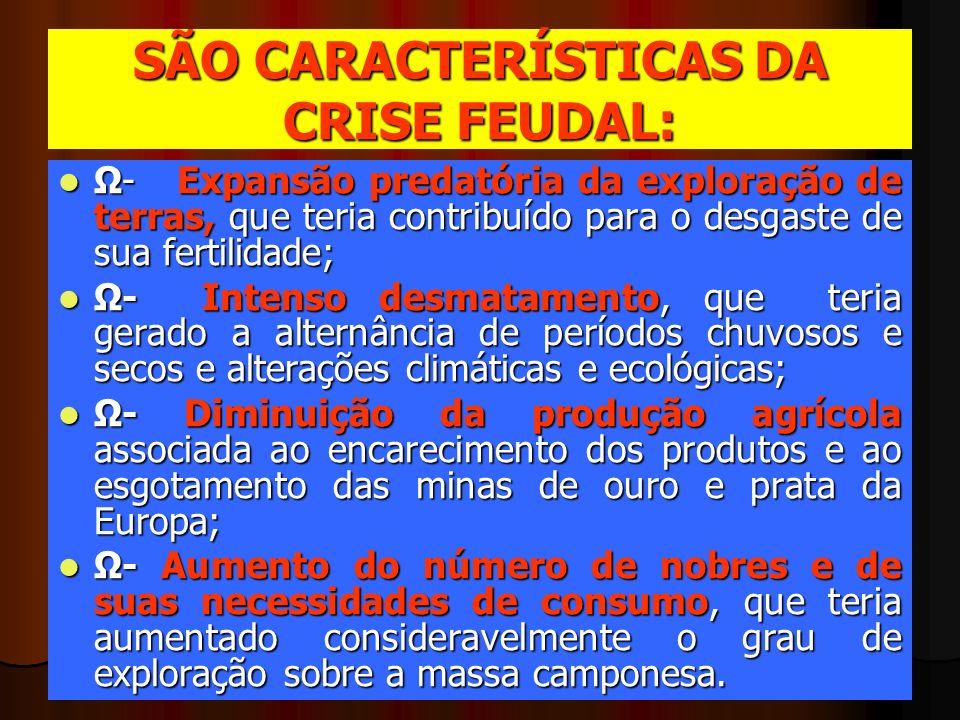 SÃO CARACTERÍSTICAS DA CRISE FEUDAL: