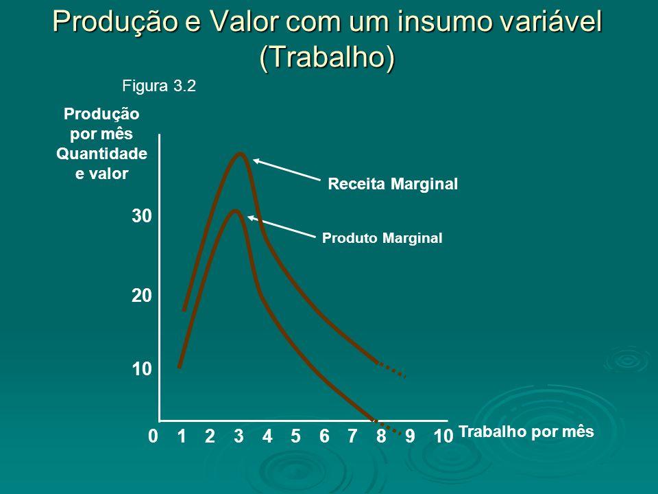 Produção e Valor com um insumo variável (Trabalho)