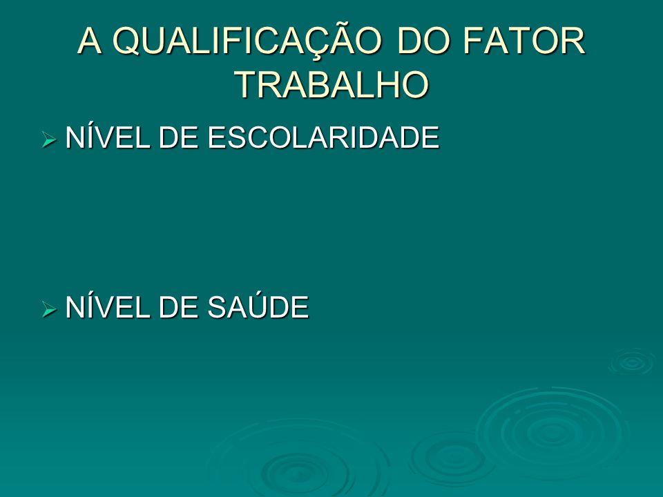 A QUALIFICAÇÃO DO FATOR TRABALHO