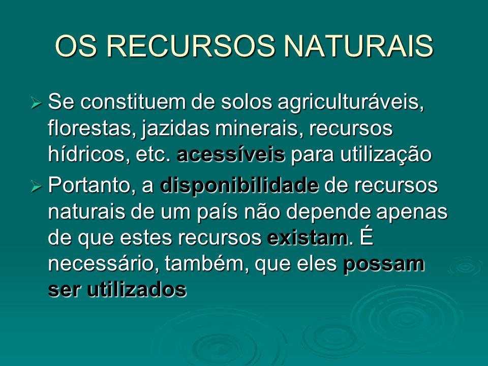 OS RECURSOS NATURAIS Se constituem de solos agriculturáveis, florestas, jazidas minerais, recursos hídricos, etc. acessíveis para utilização.