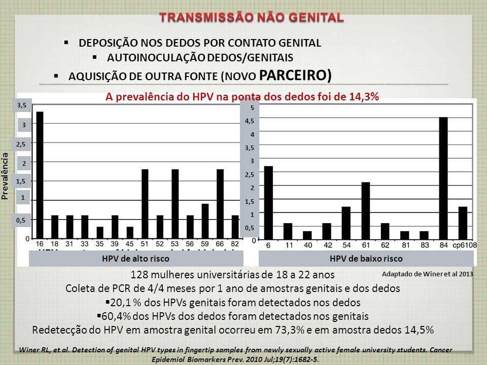 TRANSMISSÃO NÃO GENITAL