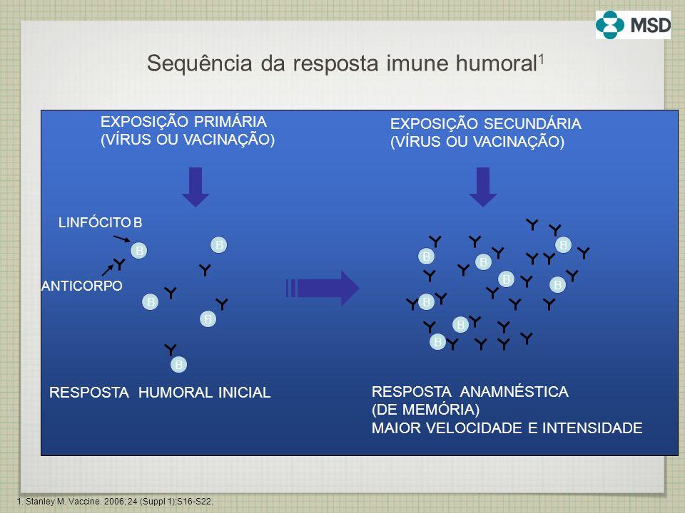 Sequência da resposta imune humoral1