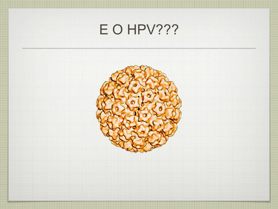 E O HPV
