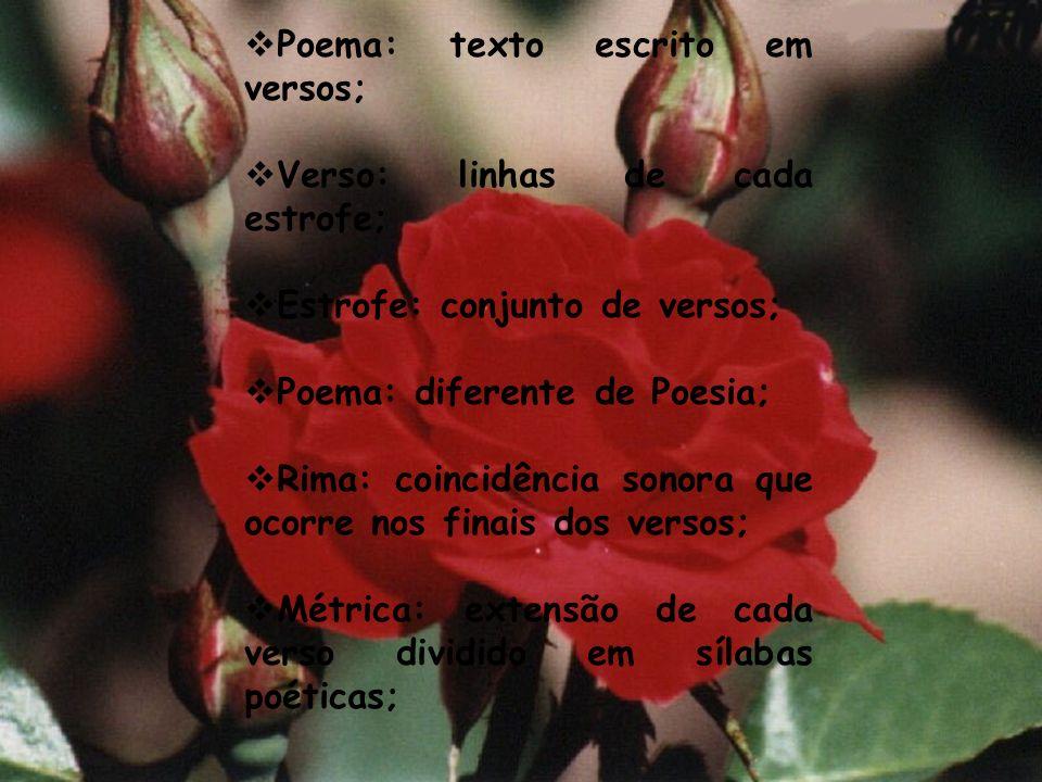 Poema: texto escrito em versos;