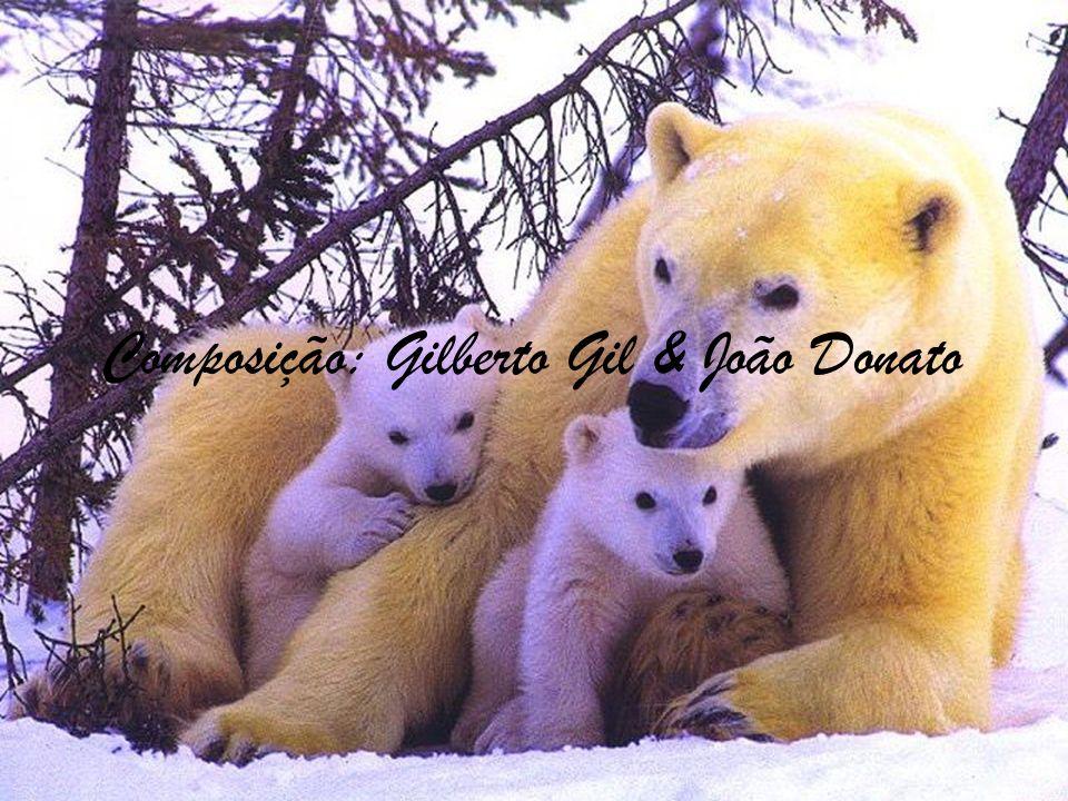 Composição: Gilberto Gil & João Donato