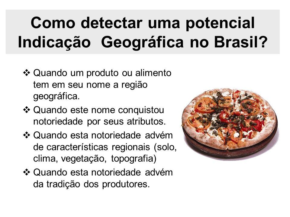 Como detectar uma potencial Indicação Geográfica no Brasil