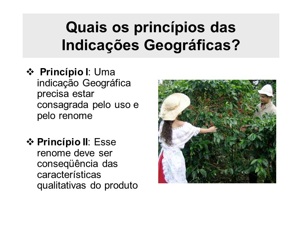 Quais os princípios das Indicações Geográficas