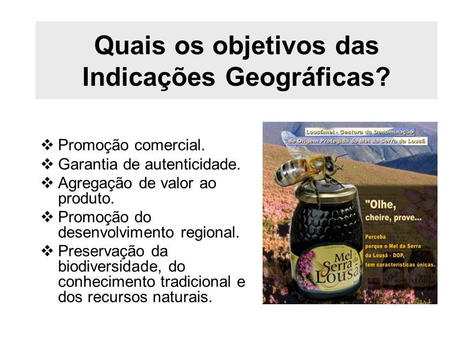 Quais os objetivos das Indicações Geográficas