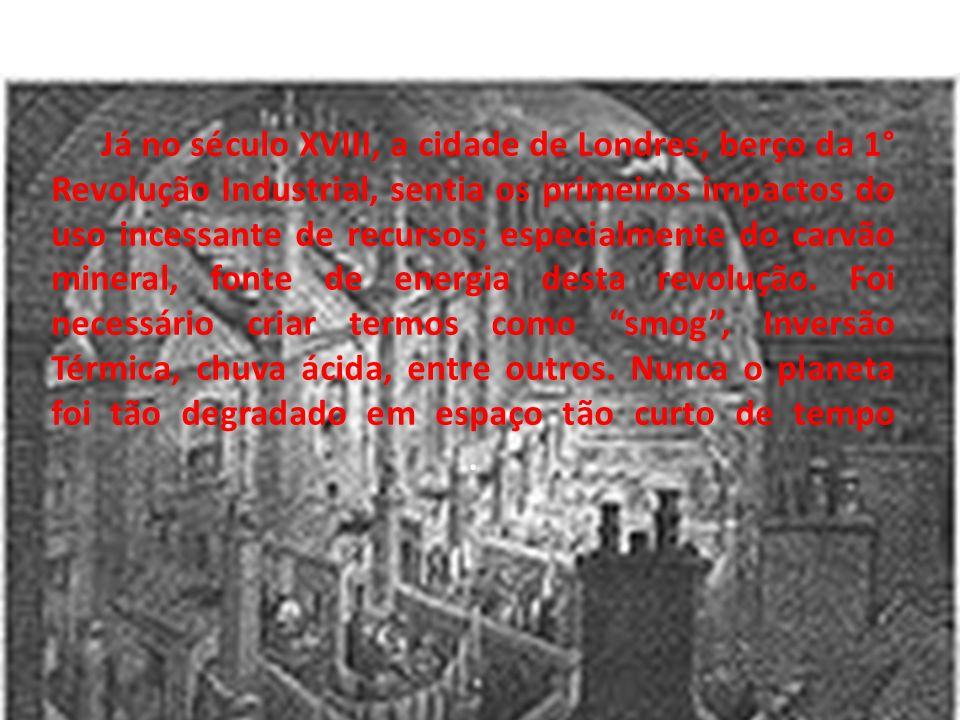 Já no século XVIII, a cidade de Londres, berço da 1° Revolução Industrial, sentia os primeiros impactos do uso incessante de recursos; especialmente do carvão mineral, fonte de energia desta revolução.
