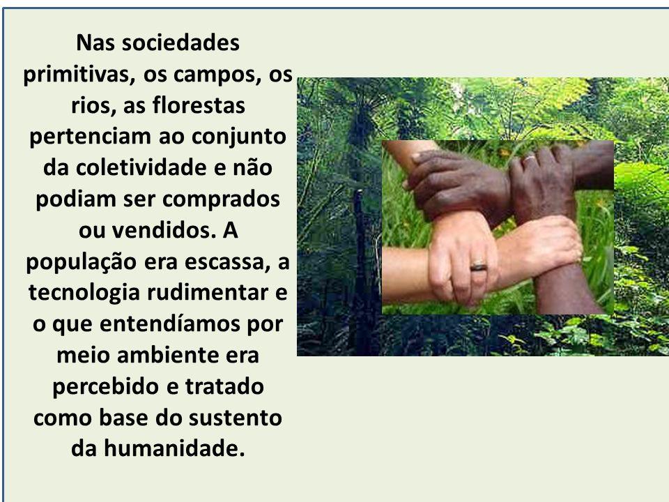 Nas sociedades primitivas, os campos, os rios, as florestas pertenciam ao conjunto da coletividade e não podiam ser comprados ou vendidos.