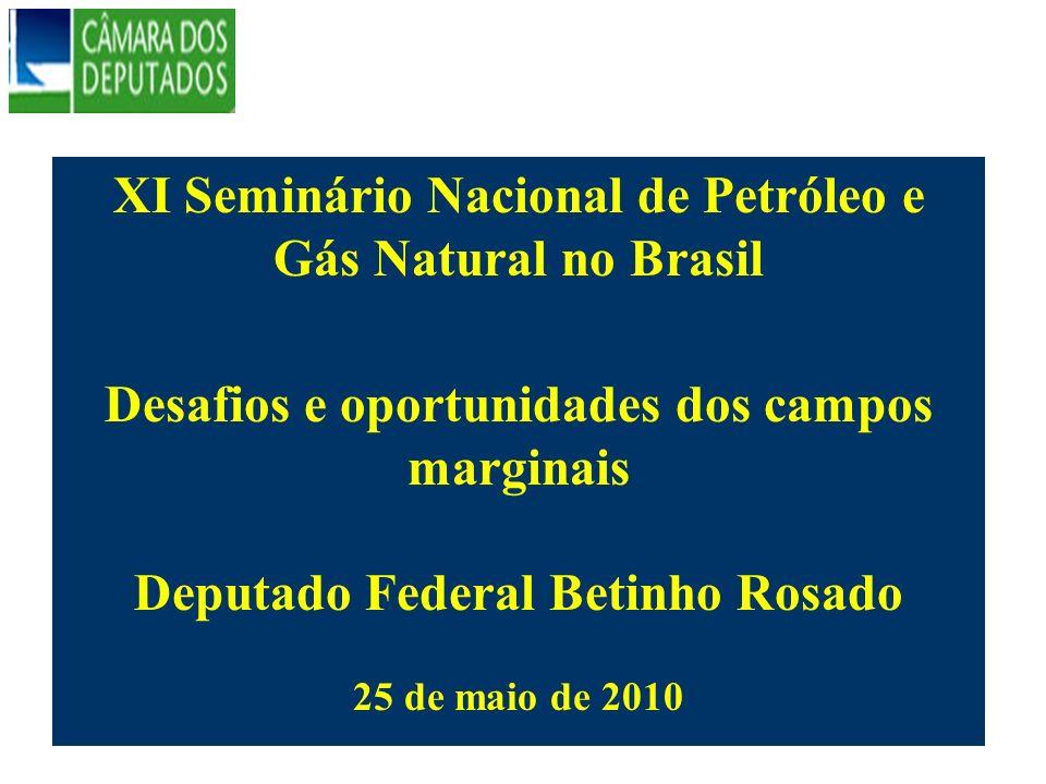 XI Seminário Nacional de Petróleo e Gás Natural no Brasil