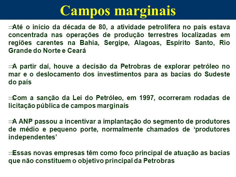 Campos marginais
