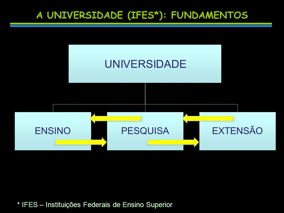 A UNIVERSIDADE (IFES*): FUNDAMENTOS