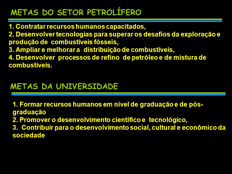 METAS DO SETOR PETROLÍFERO