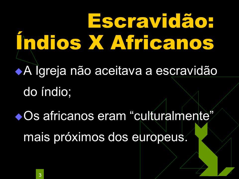 Escravidão: Índios X Africanos