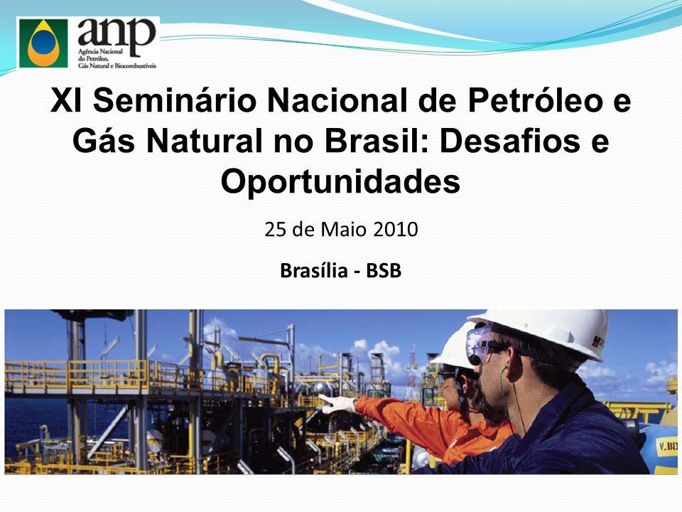 XI Seminário Nacional de Petróleo e Gás Natural no Brasil: Desafios e Oportunidades