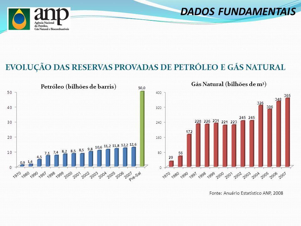 DADOS FUNDAMENTAIS EVOLUÇÃO DAS RESERVAS PROVADAS DE PETRÓLEO E GÁS NATURAL. Gás Natural (bilhões de m3)