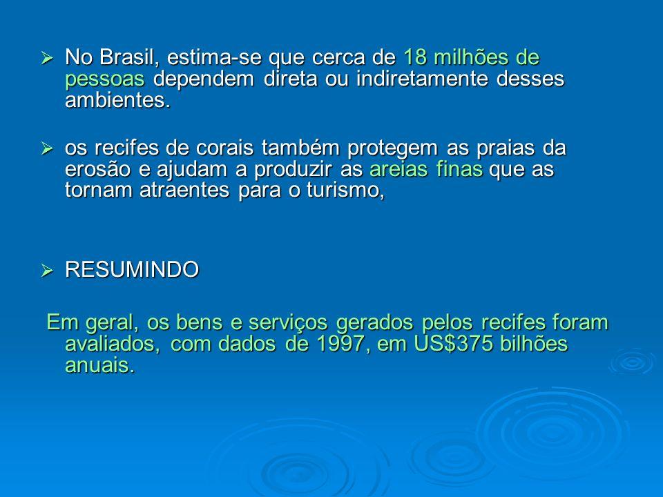 No Brasil, estima-se que cerca de 18 milhões de pessoas dependem direta ou indiretamente desses ambientes.