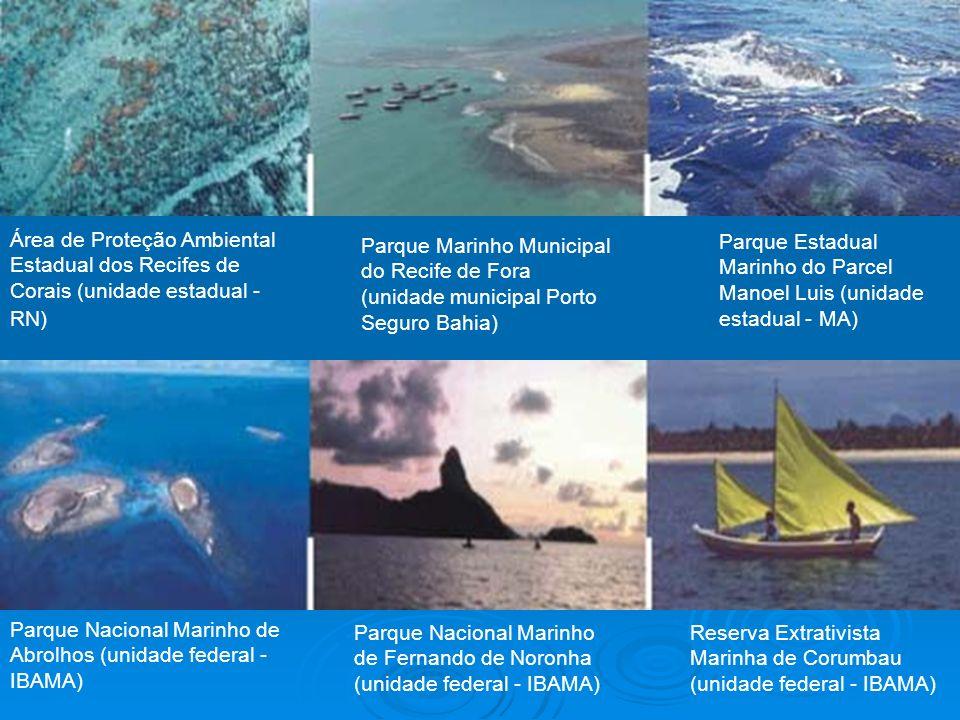 Área de Proteção Ambiental Estadual dos Recifes de Corais (unidade estadual - RN)