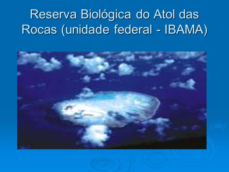 Reserva Biológica do Atol das Rocas (unidade federal - IBAMA)