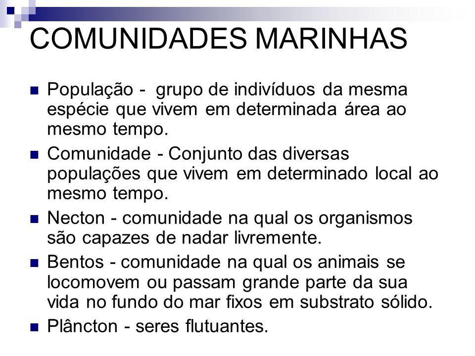 COMUNIDADES MARINHAS População - grupo de indivíduos da mesma espécie que vivem em determinada área ao mesmo tempo.