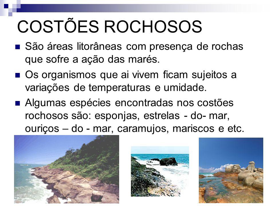 COSTÕES ROCHOSOS São áreas litorâneas com presença de rochas que sofre a ação das marés.