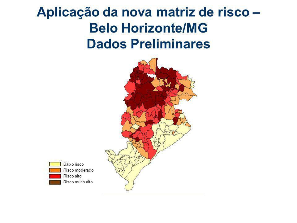 Aplicação da nova matriz de risco – Belo Horizonte/MG Dados Preliminares