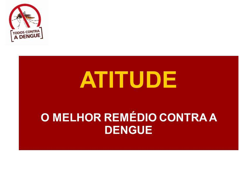 O MELHOR REMÉDIO CONTRA A DENGUE