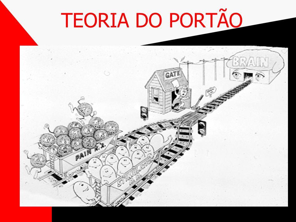 TEORIA DO PORTÃO