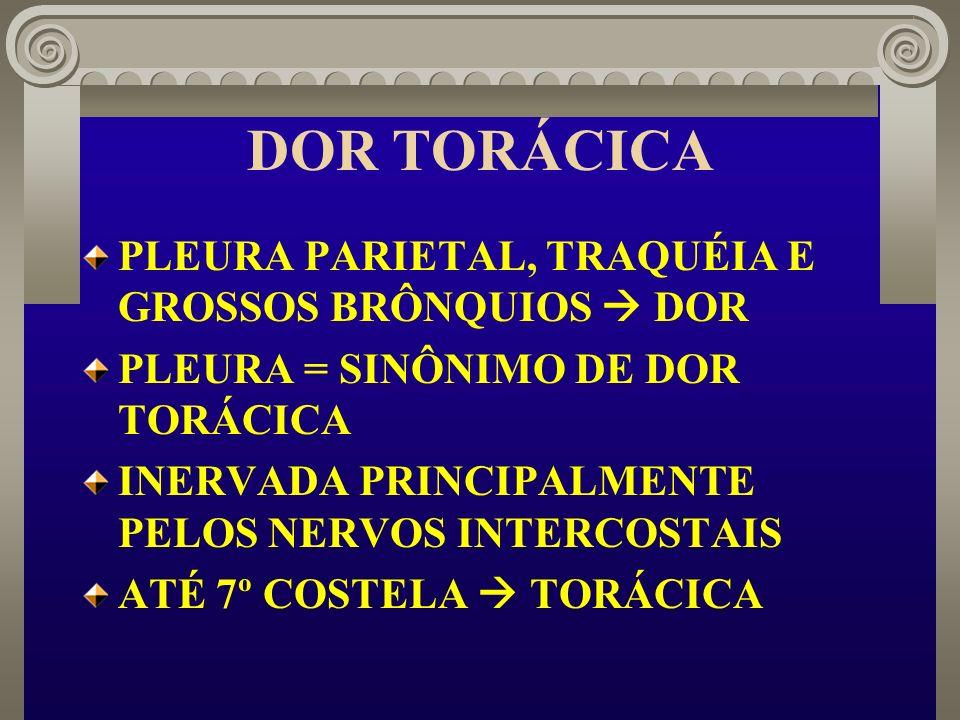 DOR TORÁCICA PLEURA PARIETAL, TRAQUÉIA E GROSSOS BRÔNQUIOS  DOR