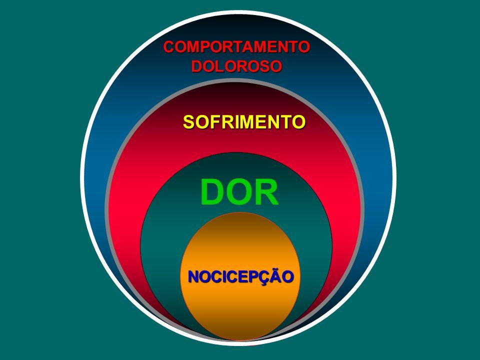 COMPORTAMENTO DOLOROSO SOFRIMENTO DOR NOCICEPÇÃO