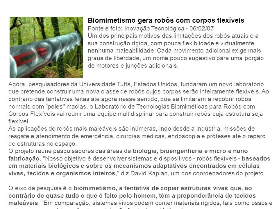 Biomimetismo gera robôs com corpos flexíveis