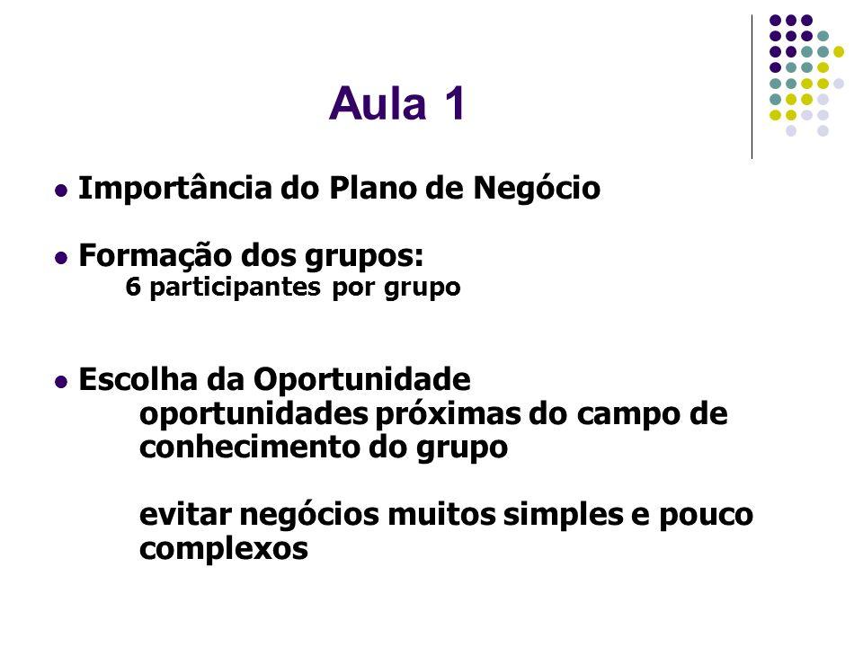 Aula 1 Importância do Plano de Negócio Formação dos grupos:
