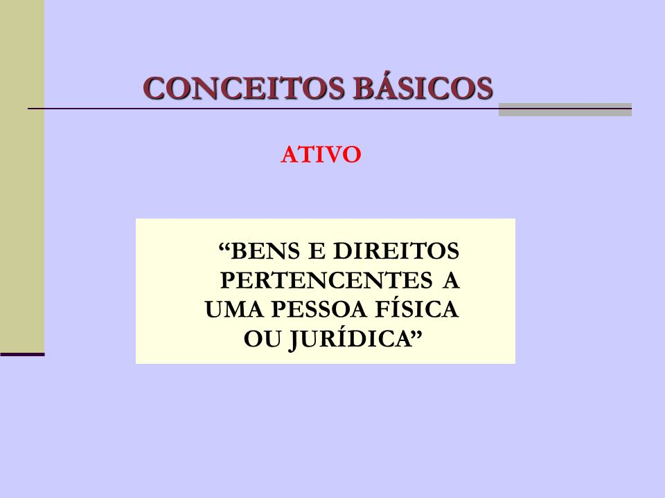 CONCEITOS BÁSICOS ATIVO BENS E DIREITOS PERTENCENTES A