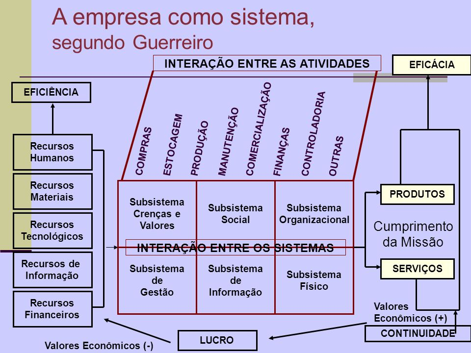 A empresa como sistema, segundo Guerreiro Cumprimento da Missão