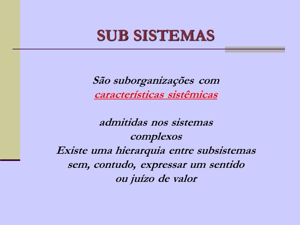 SUB SISTEMAS São suborganizações com características sistêmicas