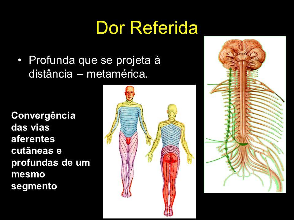 Dor Referida Profunda que se projeta à distância – metamérica.